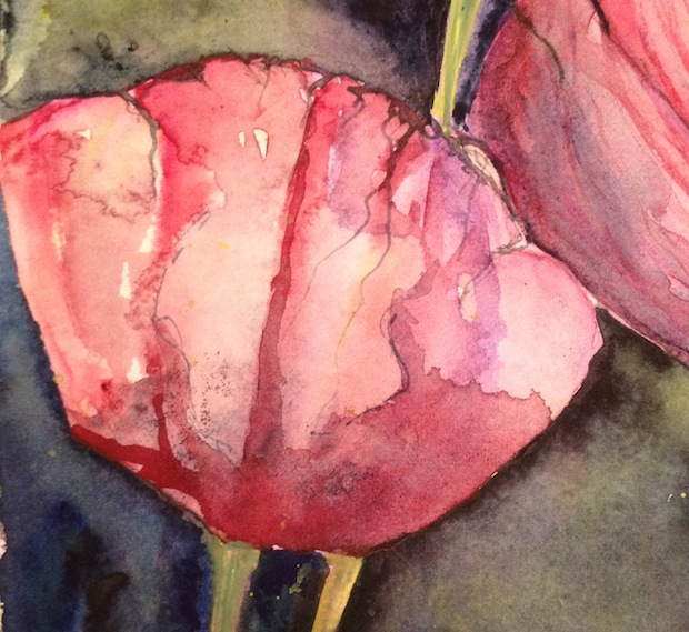 Paper petals (watercolour detail)