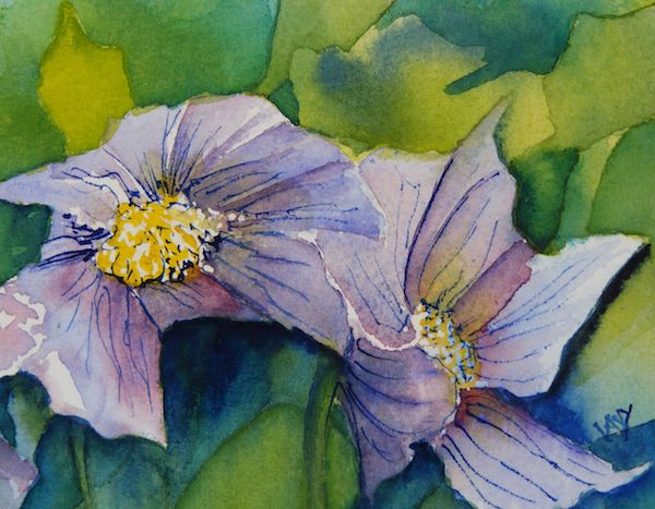 watercolour flower painting: Anemone Pair (watercolour 10 x 15 cm) Artist: Vandy Massey