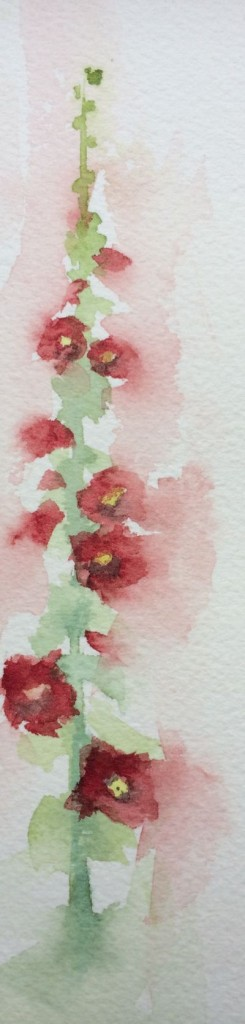 Garden sketching - hollyhock flower