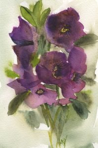 Hellobore Posy - small watercolour by Vandy Massey. Part of a 1000 watercolour project.