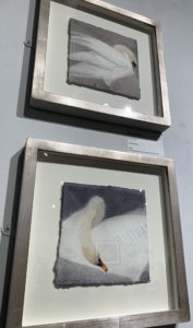 Royal Institute of Painters in Water Colours exhibition - Mute Swan I and Mute Swan II - paintings by Claire Harkess