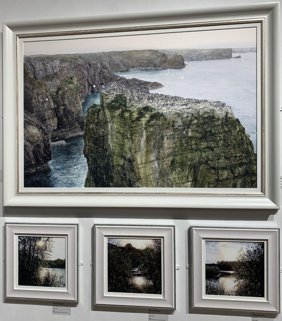 Guillemots, Sea Beet and Tree Mallow (Top), Wild Swimmers, Liquid Gold I, and Liquid Gold II by Deborah Walker RI RSMA