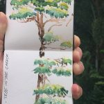 Watercolour Sketchbook - Wongaling Garden Tree