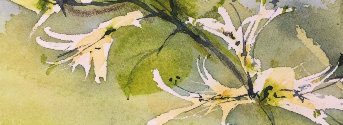 Spring . An excerpt from a watercolour by Vandy Massey